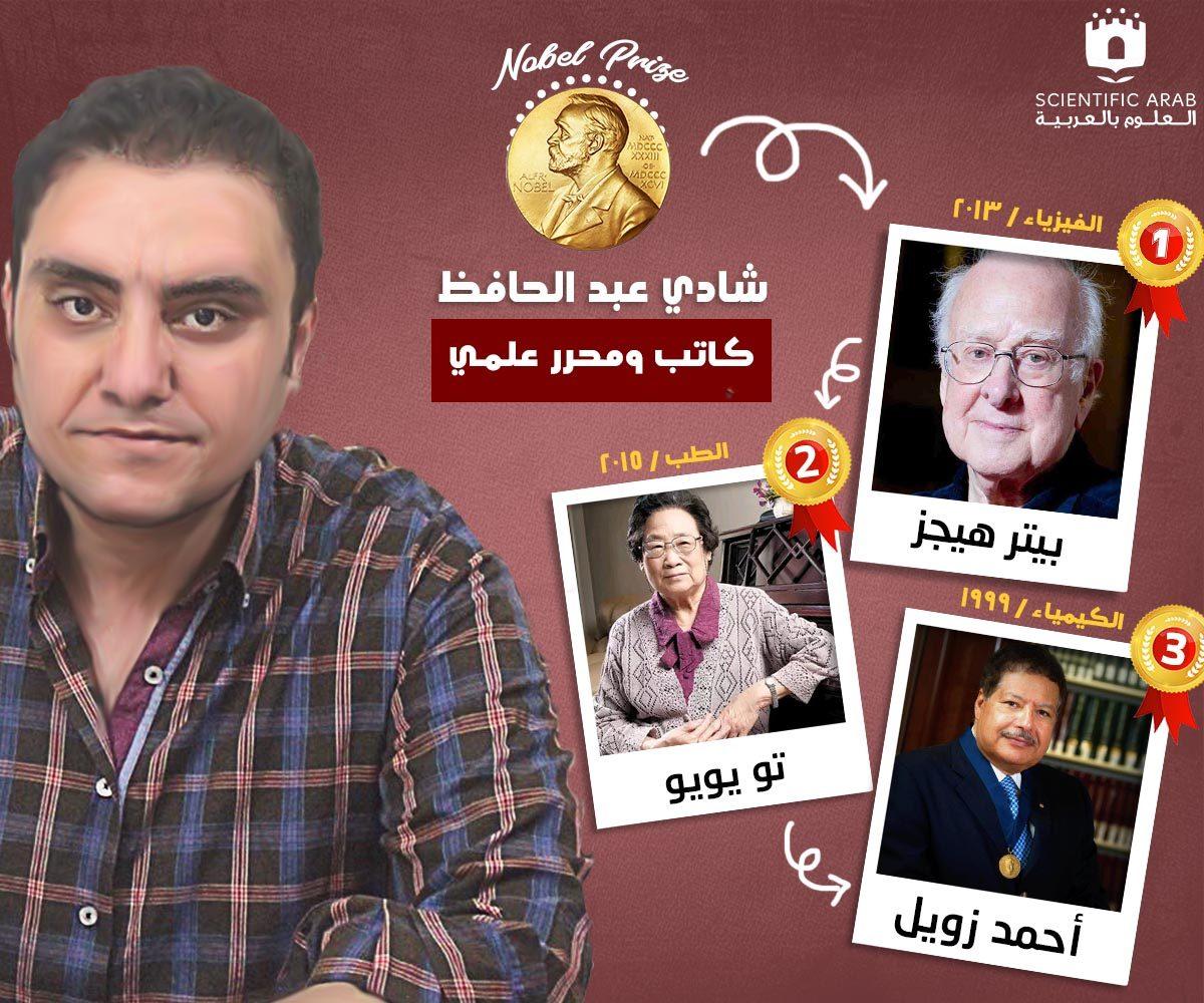 شادي عبد الحافظ