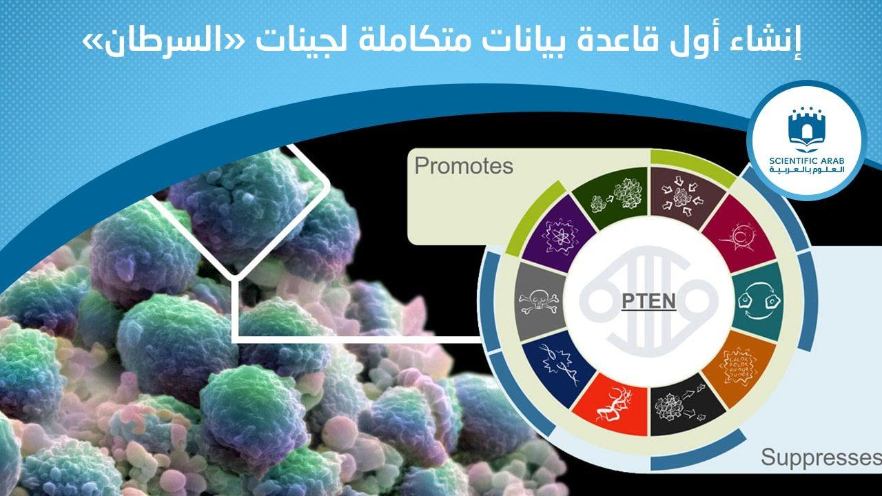 أخبار العلوم, النشرة, السرطان