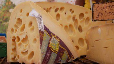 جبن الأمنتال, الألحان الموسيقية, صناعة الجبن, موسيقى, تجارب علمية