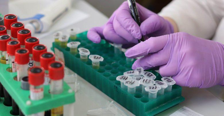 وظائف الرحم, بيولوجي, طب, دراسات علمية