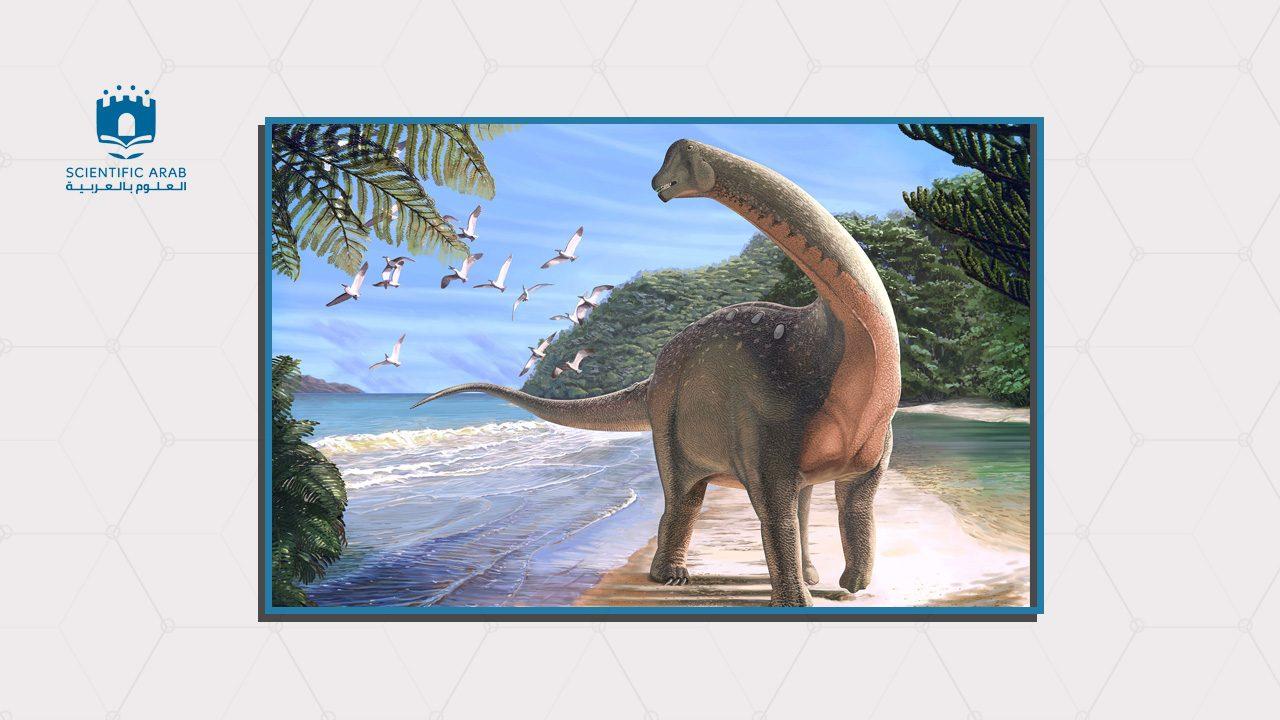 منصوراصورس, ديناصور مصري, مصر, اكتشافات علمية, 2018