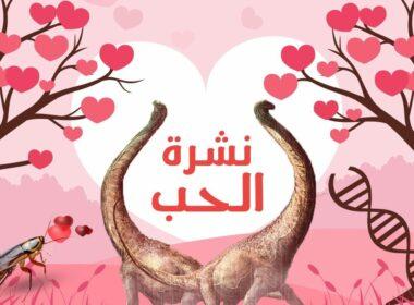 عيد الحب, فالانتاين, حيوانات, عصافير
