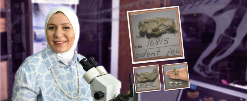 حوار مع شروق الأشقر حور احدث اكتشافاتها قطرانيميزسفروتس